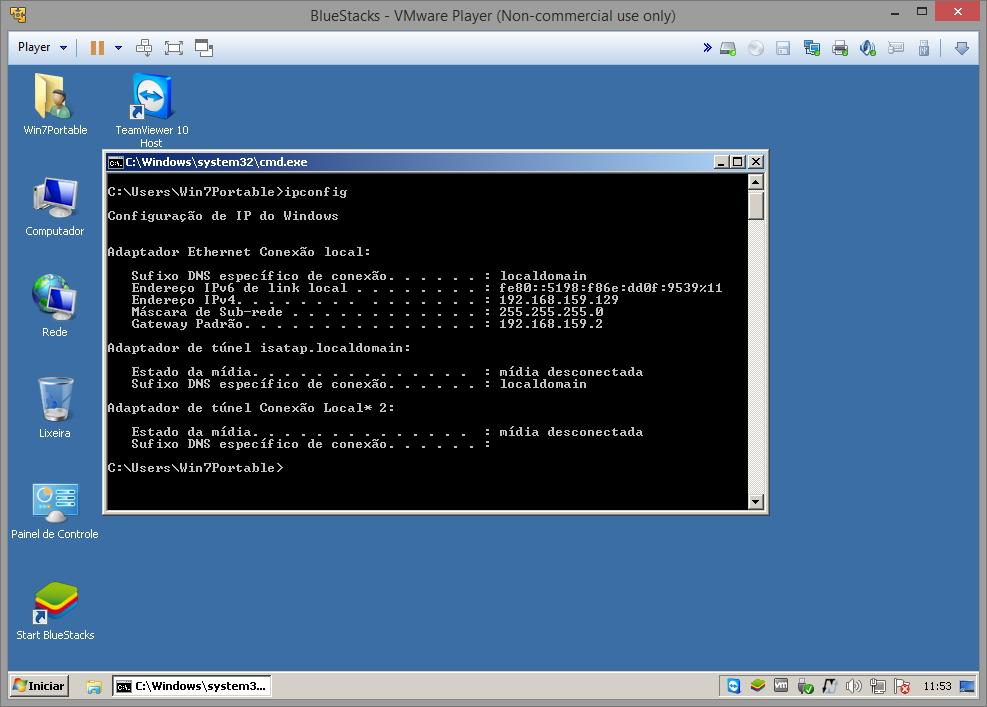 VMware Player rede interna NAT