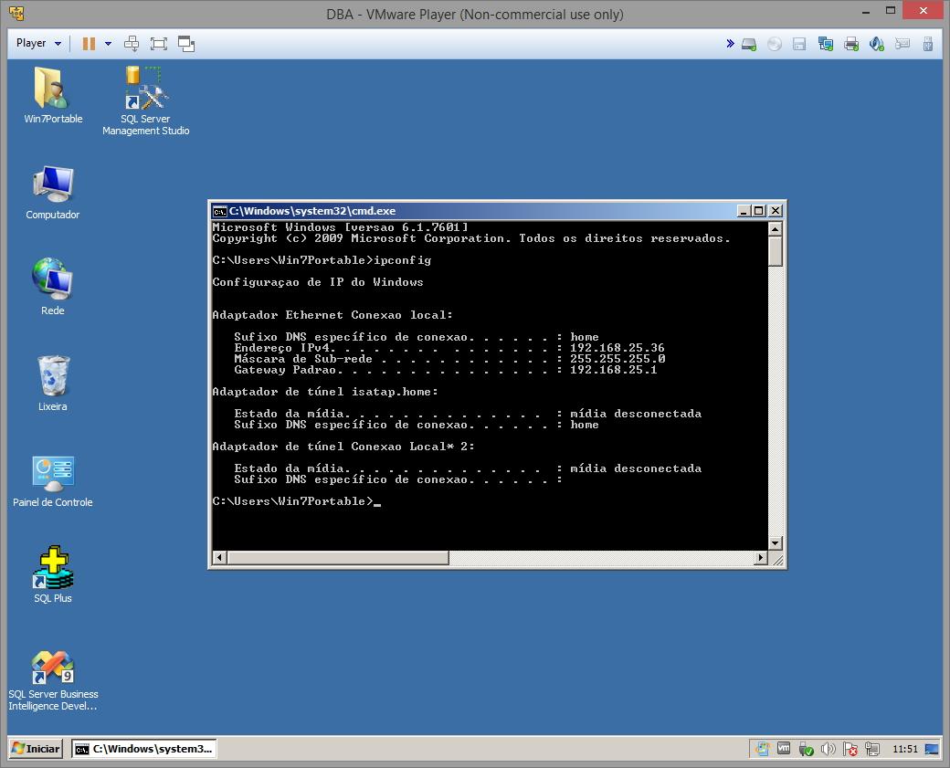 VMware Player rede interna