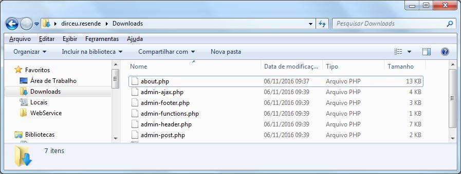 Resultado final com os arquivos baixados do FTP